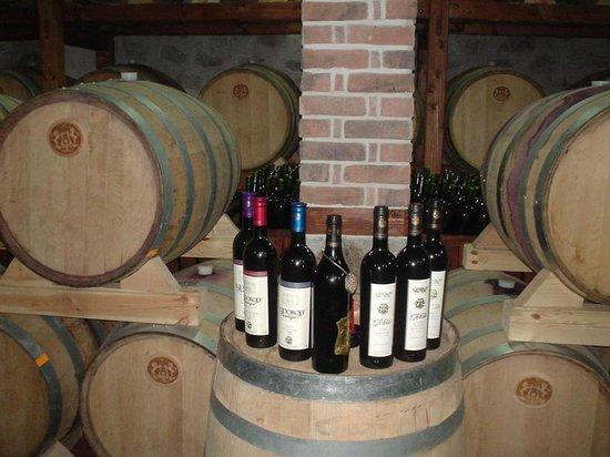 Zelanos Day Tours: Bulgarian wines