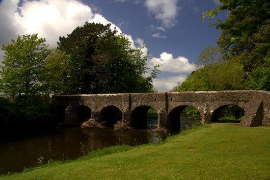 Antrim Castle Gardens: Bridge