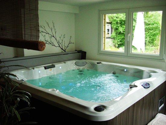 spa jacuzzi photo de cosy home melesse tripadvisor. Black Bedroom Furniture Sets. Home Design Ideas