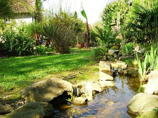 Jardin exotique photo de cosy home melesse tripadvisor - Photo jardin exotique ...