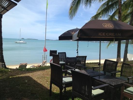 Samui Palm Beach Resort & Hotel : Bar