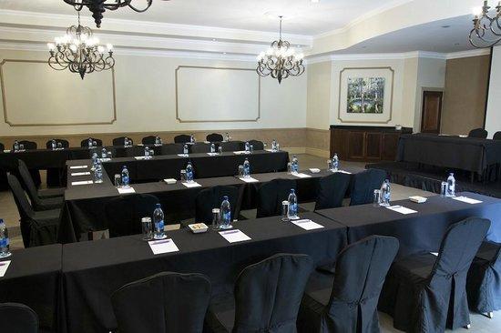 Three Rivers Lodge & Villa Anna Sophia: Conference Setup