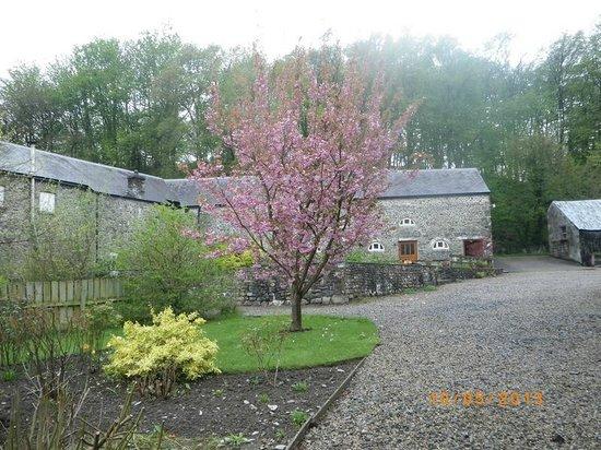 Henllys Estate Bed & Breakfast: Nice garden