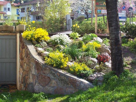 Giardino roccioso foto di agritur cristina smarano - Giardino roccioso foto ...