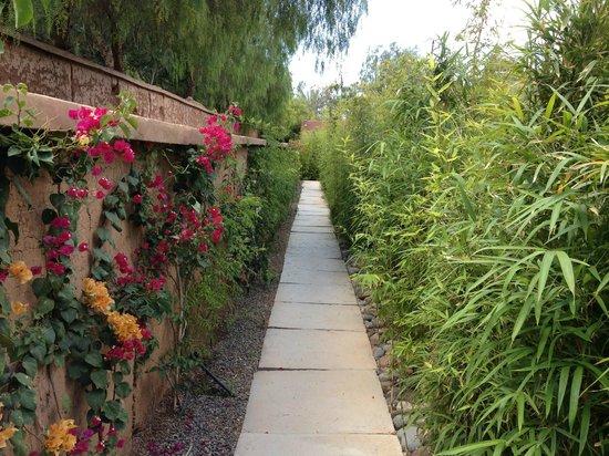 Tigmiza - Suites & Pavillons: Le petit chemin qui rejoint les pavillons