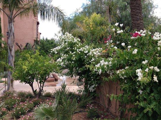 Tigmiza - Suites & Pavillons : Les jardins du Tigmiza
