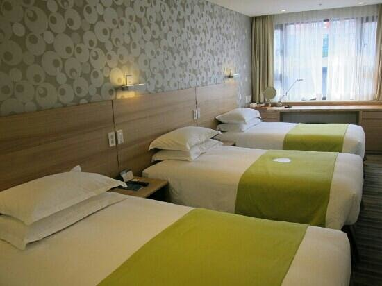 Nine Tree Hotel Myeong-dong: Triple Room
