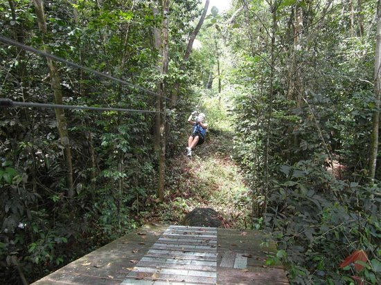 Coconut Bay Beach Resort & Spa: Zip wire