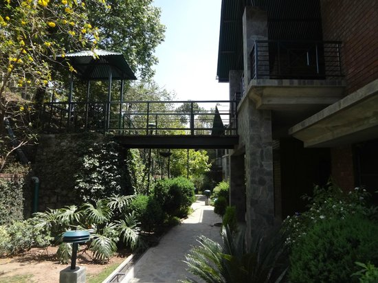 Baikunth Resort Kasauli: View of Resort Rooms
