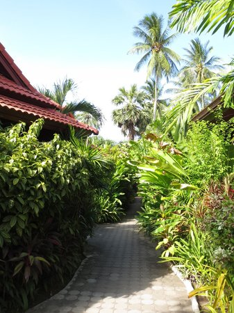 Smile House Resort: Lush vegetation