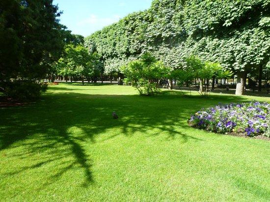 Foto De Jardines De Luxemburgo Par S Maravilla En Plena Primavera Tripadvisor