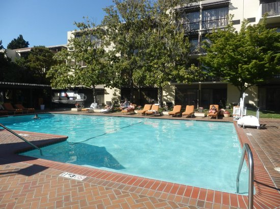 Sheraton Palo Alto Hotel : Pool - lovely to see a duck swimming here each evening!