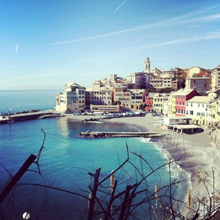 hotel bogliasco liguria - photo#14