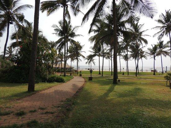 Taj Holiday Village Resort & Spa: View