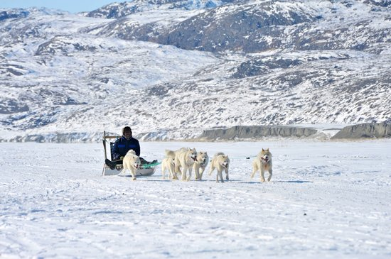 World of Greenland Arctic Circle - Day Tours
