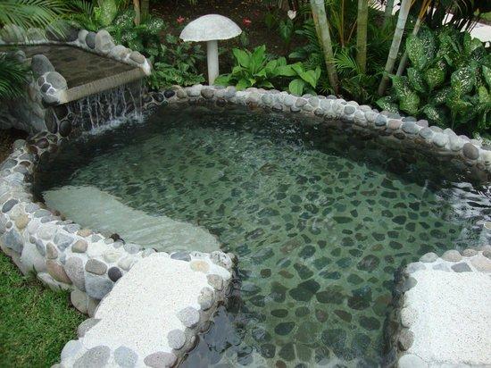 Hotel El Silencio del Campo : Pool