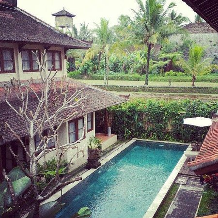 Munari Resort & Spa: view from our room