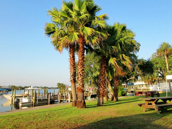 Homosassa Riverside Resort : River front units looking over the docks
