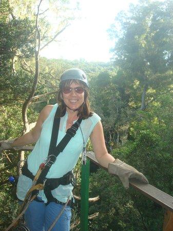 Tsitsikamma Canopy Tours: Treetop Fun