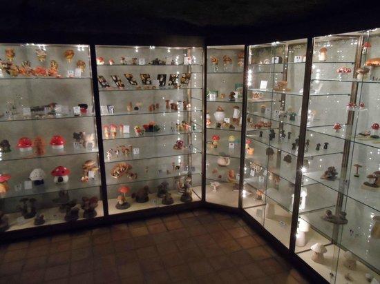 Musee du Champignon: Vitrine met diverse champignons