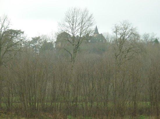 Chateau de Castel-Novel : Le château vu de la route.