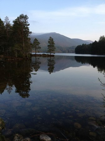 Pine Bank Chalets: Loch an Eilein