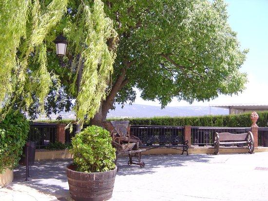 Hotel Restaurante Rural Caseta Nova: Enchanting grounds