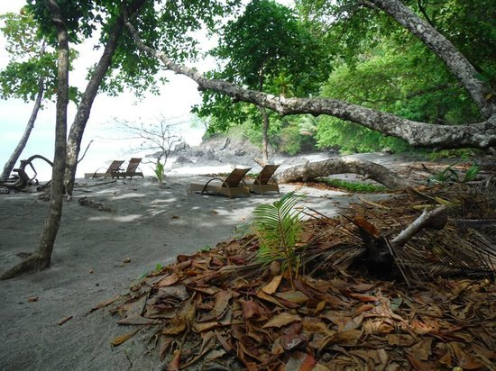Arenas del Mar Beachfront and Rainforest Resort, Manuel Antonio, Costa Rica: Private beach