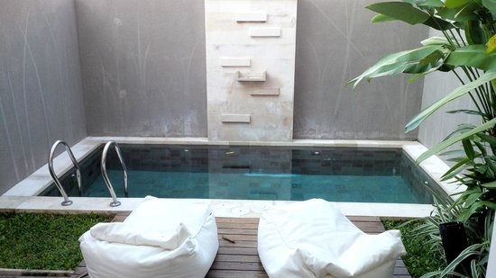 Uppala Villa Seminyak: Plunge Pool In the Suite Villa