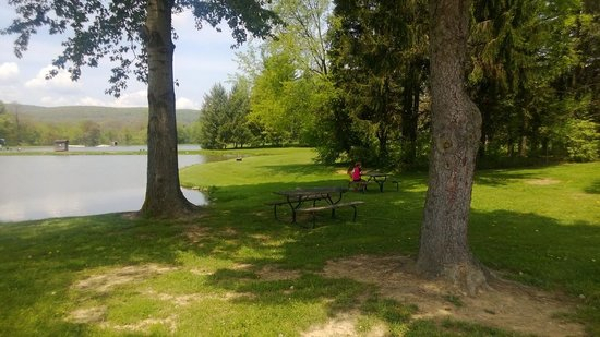 Pioneer Park Campground: Fishing Lake