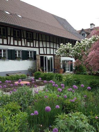Garten Bed & Breakfast Gätzibrunnen