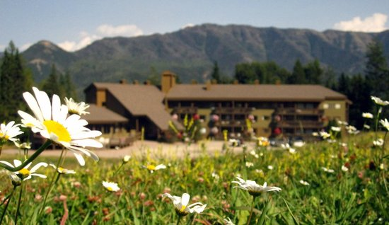Griz Inn Sport: Griz Inn at Fernie Alpine Resort - Mountain Wildflowers