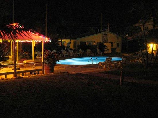 Lofty Fig Villas: Pool at night