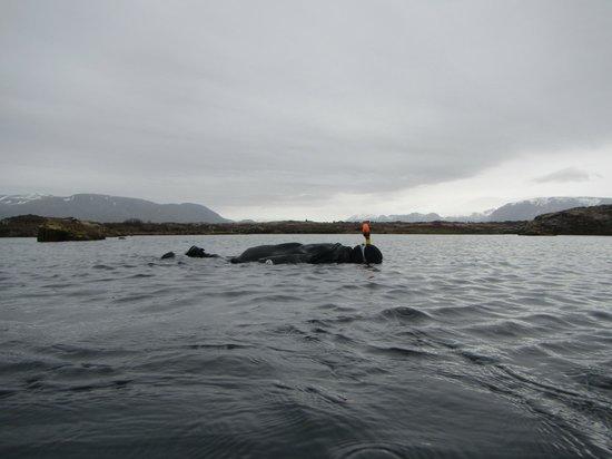 Scuba Iceland: Snorkling Slifra