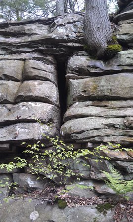Beartown State Park: Rock Layers