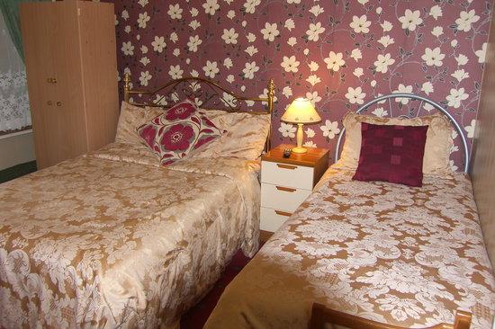 Caroldene Hotel: Twin Room