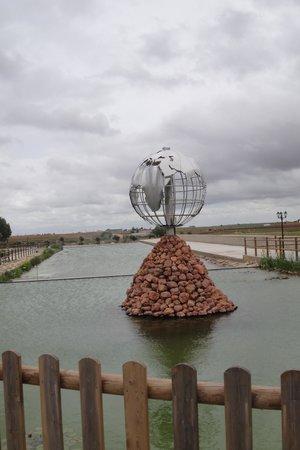 Vinedos y Bodegas El Castillo: estanque