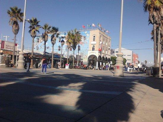 Samesun Venice Beach : Cotel
