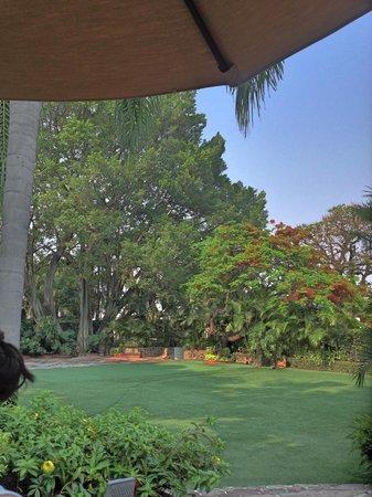 Hotel Boutique Casa de Campo : El jardín bien espacioso y con mucha vida del hotel.