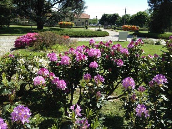 Hotel Villa Malpensa: The grounds at the Villa