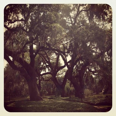 Montage Palmetto Bluff: The grounds at PB are enchanting