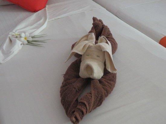 Koggala Beach Hotel : A pressie from the cleaner - cute