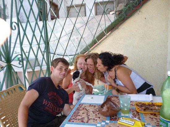 Hamel Hostel: pet