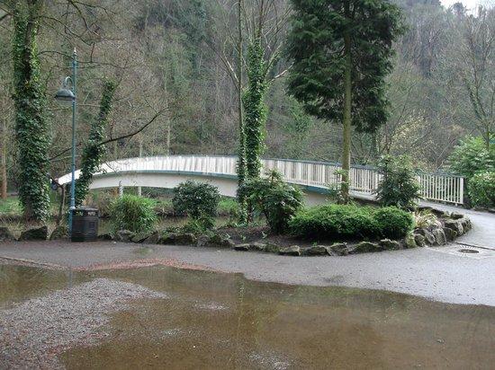 Lovers' Walk, Matlock Bath: Riverside walk (2)