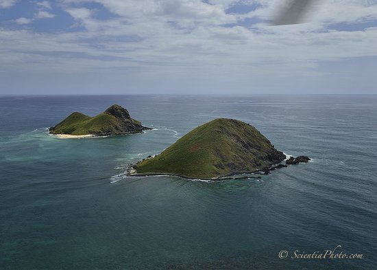 Makani Kai Helicopters: Mokulua Islands, Just 1 Mile from Lanikai Beach