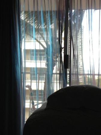 Ewa Hotel : I HAD MY WINDOWS OPEN ALL DAY ALL NIGHT