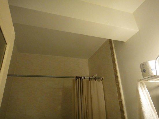 Rideau de douche - Picture of Hotel Carter, New York City - TripAdvisor
