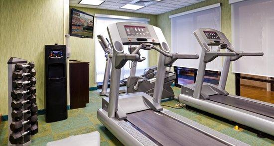 Springhill Suites Sarasota Bradenton: Fitness Room