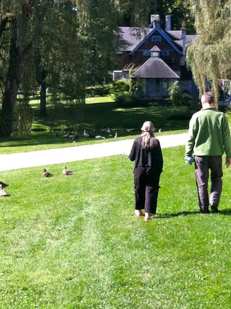 Stonover Farm Bed and Breakfast: Walking with Suki