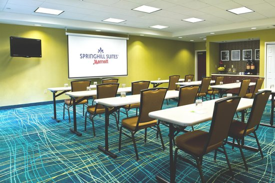 Springhill Suites Sarasota Bradenton : Elements Meeting Room